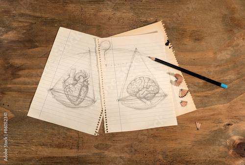 Disegno a matita di cuore e cervello su tavolo di legno grezzo ...