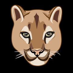 WILD CAT, COUGAR illustration  vector