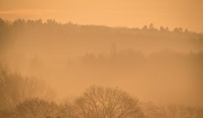 Herbstlicher Nebel