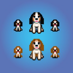 cavalier king charles spaniel dogs pixel art illustration