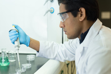 Researcher working with a Pipette and Petri Dishes