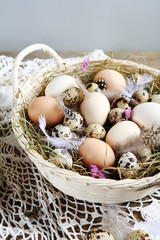 Farm Easter eggs in basket