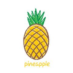 pineapple fruit, sketch design vector