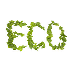 Inscription ECO is composed of green parsley leaves, isolated on
