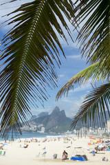 Palm fronds frame a scenic view of Ipanema Beach Rio de Janeiro Brazil from Arpoador