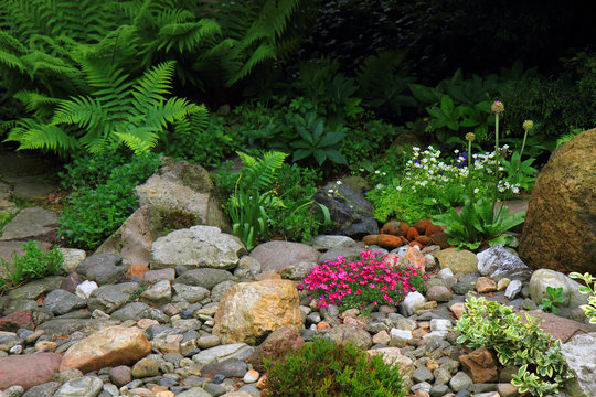 spring flowers and plant garden