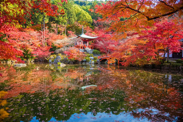 Autumn at daigoji temple