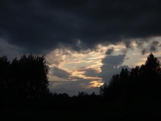 Закат с желтоватыми оттенками над темным лесом