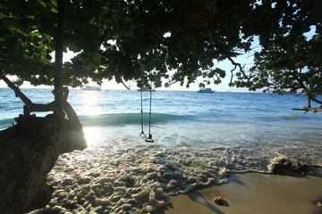 surf on a sandy beach paradise island