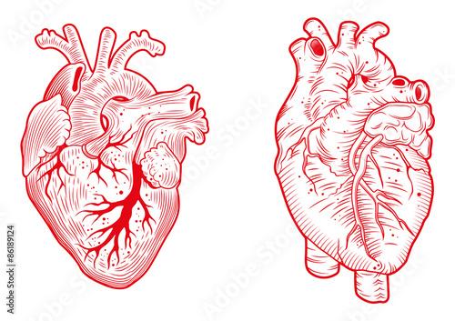 hearts\