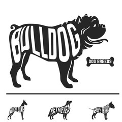 Isolated dog breed silhouettes set with names of breeds inside