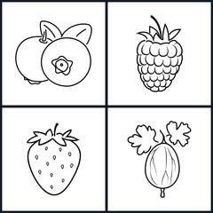 Strawberry,Raspberries,Blueberries,Gooseberry