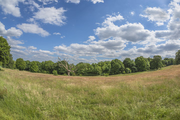 Parliament Hill in Hampstead Heath park, London, England, UK