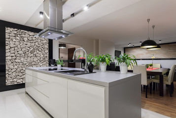 Designed kitchen with stone wall