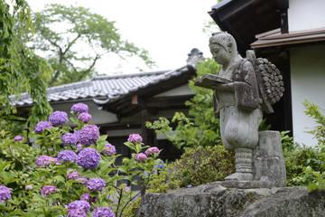 二宮金次郎と紫陽花