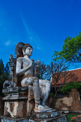 the image of buddha in thailand