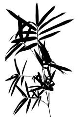 tige de bambou en ombre chinoise sur fond blanc