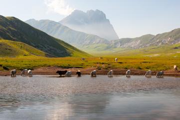 Gran Sasso d' Italia Lago Pietranzoni