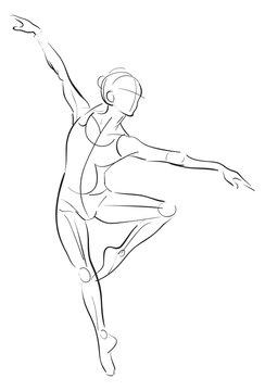 Female anatomy drawing sketch