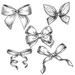 hand drawn illustration of bows