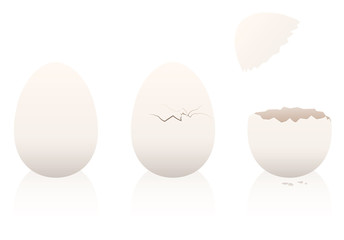 Eggs - one is intact, the second is broken, the third is open. Three-dimensional isolated vector illustration on white background.