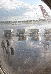 Багажные вагоны в аэропорту через иллюминитор