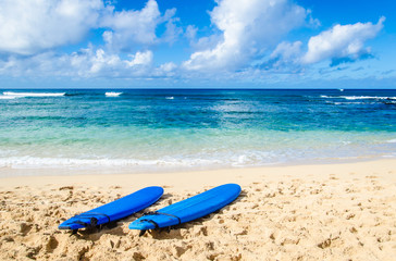Wall Mural - Two Surfboards on the sandy beach in Hawaii