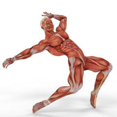 muscle medical man ballet dance