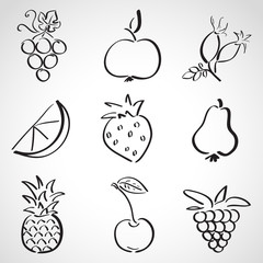 Ink style sketch set - fruits and berries