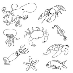 Sea animals  coloring page