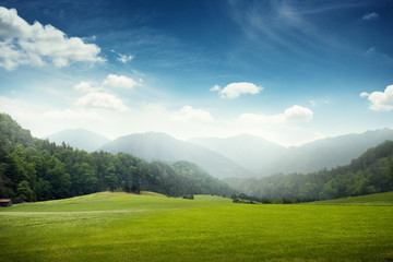 Fototapeten Blau Jeans green meadow and hills with forest