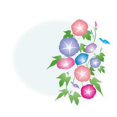 朝顔-01■あさがお・アサガオ・夏イメージ・カラフル