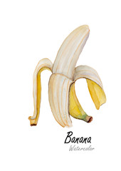 Banana open.Hand drawn watercolor painting  on white background.Vector illustration