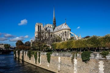 Cathedral Notre Dame de Paris on Cite Island, Paris, France.