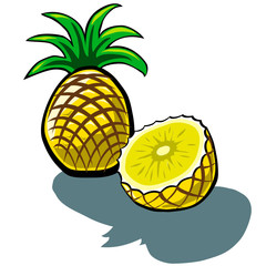 Pineapple and Slice