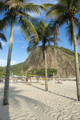 View of Sugarloaf Mountain through palm trees from the Leme section of Copacabana Beach, Rio de Janeiro, Brazil