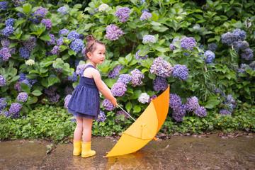 紫陽花の前で傘を持つ少女
