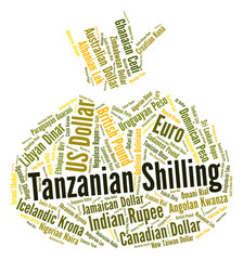 Tanzanian Shilling Means Exchange Rate And Foreign