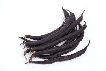 紫インゲン