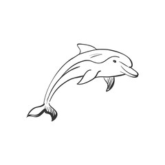 doodle dolphin