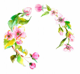 Watercolor apple flowers wreath
