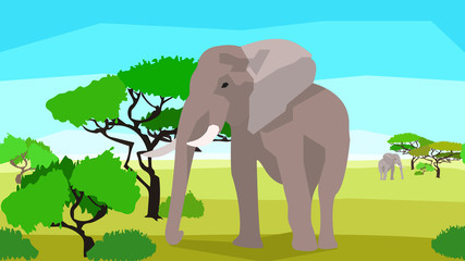 Elephant in a field with trees, seamless, animals and nature