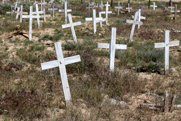 Multiple simple white crosses with no names at an overgrown New Mexico mission cemetery
