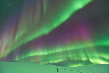 Aurora Borealis in Alaska.
