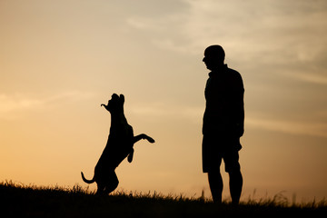 Hund und Herrchen als Silhouette bei Sonnenuntergang