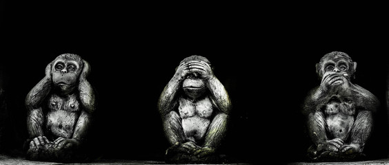 Theory three wise monkeys /Monkey close ears monkey close mouth and Monkey close eyes .
