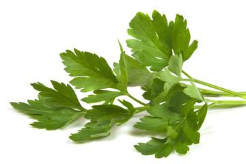 fragrant sprig of parsley