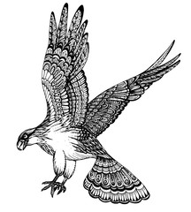 Vector hand drawn illustration of decorative eagle