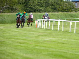 Race horses coming in on the home straight