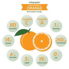 health benefits of orange info graphic, fruit vector illustratio